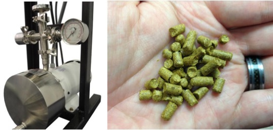 Typical SPR for hops and hop pellets frequently used for brewing.